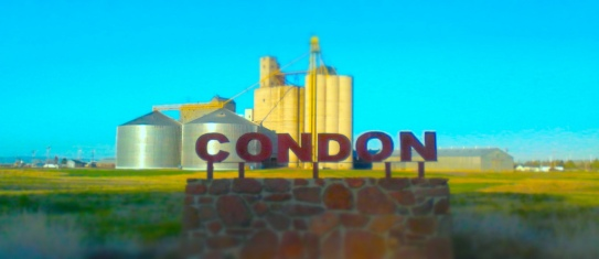 Condon. Photo by Tim Graves