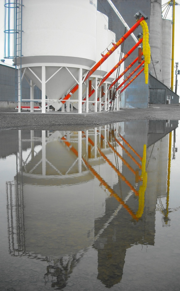 The grain elevator in Condon, Oregon is a grey concrete structure. These tanks have bright plastic tubes where many elevators have cold, steel. An unexpected puddle on the grey gravel creates an unexpected beauty in the common and utilitarian. Photo by Tim Graves