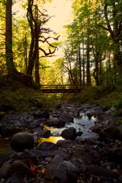 Gorton Creek Bridge, near Hood River, Oregon. Photo by Tim Graves. Creative Commons copyright (Attribution-NonCommercial-NoDerivs 3.0 Unported (CC BY-NC-ND 3.0)