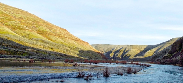 Early March in Cottonwood Canyon, near Condon, Oregon. Photo by Tim Graves (Creative Commons License BY-NC-ND 3.0)